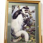 Абиссинская обезьяна