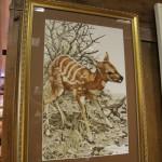 Кустарниковая антилопа